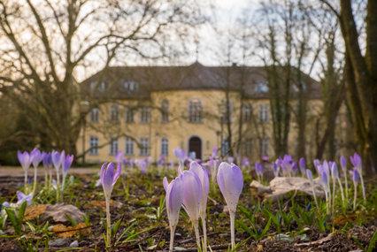 Schloss Holdenstedt